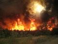 пожар в северном 29.07.2010
