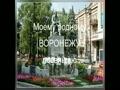 Посвящаю мой родному Воронежу