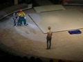 Подруга в цирке зажигает